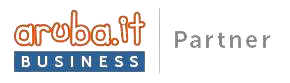 Badge Aruba Business Partner
